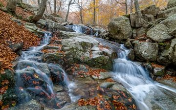 stones, forest, leaves, waterfall, autumn, river, the colors of autumn