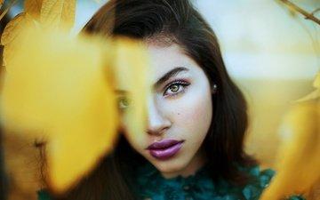 листья, девушка, портрет, брюнетка, взгляд, осень, макияж, боке
