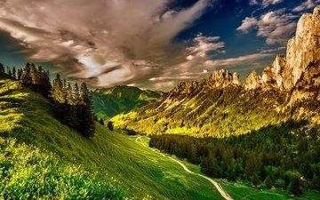 небо, трава, облака, деревья, горы, скалы, солнце, зелень, лес, склон, швейцария, ущелье, тропа, долина, альпы