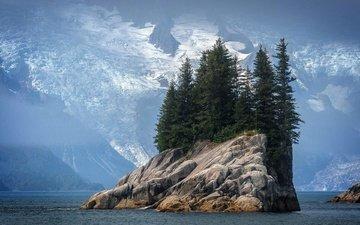 облака, снег, берег, пейзаж, море, скала, гора, залив, океан, остров, ели, норвегия, фьорд, деревьями