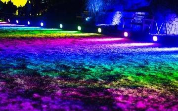 свет, разноцветный, освещение