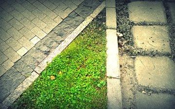 трава, стиль, город, плитка, бордюр, тратуар