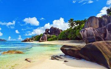 sea, beach, tropics, seychelles