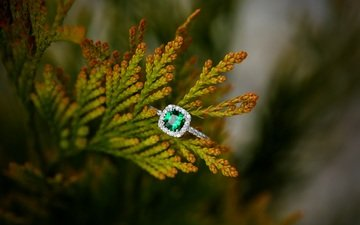 ring, decoration, emerald
