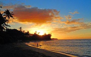 закат, море, пляж, тропики, 5