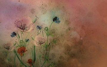 wallpaper, texture, background, grunge, textures, original, cocoparisienne, author's graphics