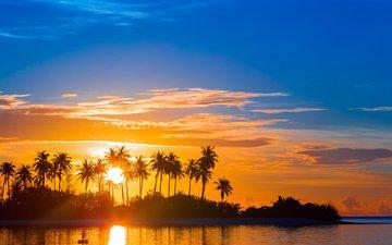 закат, море, пальмы, тропики