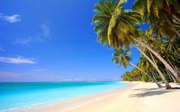 sea, beach, tropics, 4