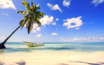 sea, beach, boat, tropics