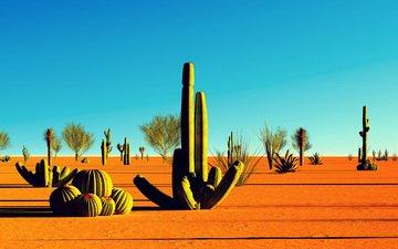 landscape, sand, desert, ca, cacti