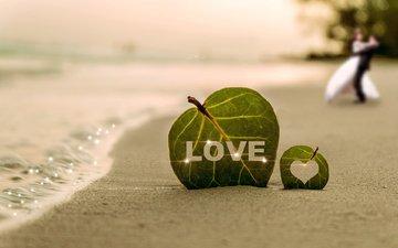 листья, море, песок, пляж, пара, листочек, влюбленная