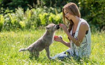 цветы, трава, природа, девушка, улыбка, взгляд, собака, модель, волосы, лицо, гентер стоер