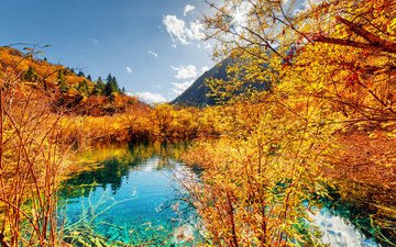 the sky, trees, river, nature, forest, mountain, autumn