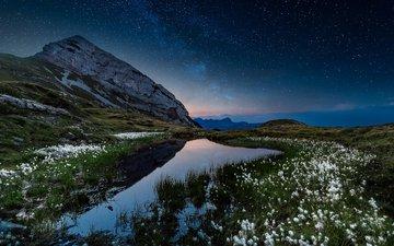 небо, цветы, озеро, горы, природа, звезды, сумерки, fabio antenore