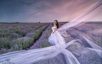 flowers, clouds, girl, field, lavender, look, model, face, white dress, the bride, minko minkov