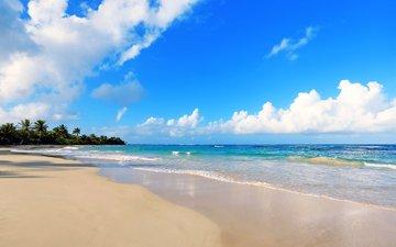 море, пляж, тропики, 8