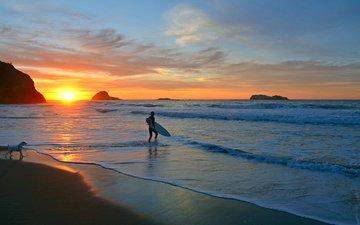 закат, море, пляж, собака, сёрфер