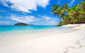 sea, beach, tropics, 17