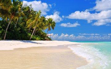 sea, beach, tropics, 9