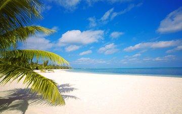 sea, beach, tropics, 16