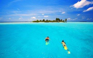 sea, beach, island, tropics, diving