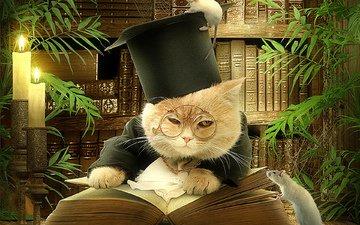 арт, кот, дом, комната, мыши, вс, смайл, видим, ницца, летнее, read, книгa, учёный, scientist