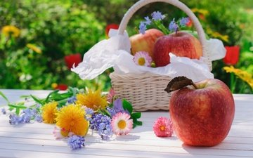 flowers, fruit, apples, basket, still life
