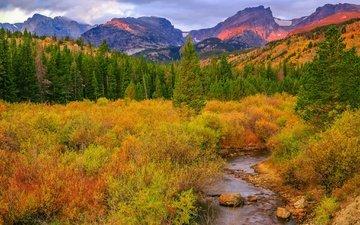 деревья, река, горы, природа, ручей, кусты, осень, сша, колорадо, роки-маунтин