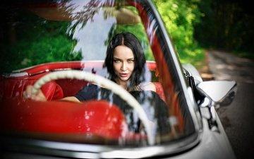 девушка, брюнетка, взгляд, авто, модель, волосы, лицо, ангелина петрова