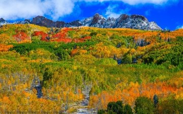 the sky, clouds, mountains, forest, slope, autumn, usa, colorado, aspen
