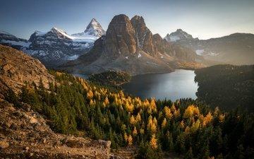 цветы, озеро, горы, природа, пейзаж, канада, гора ассинибойн