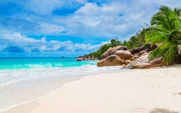 sea, beach, island, tropics, seychelles
