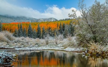 the sky, clouds, trees, lake, mountains, reflection, frost, autumn, usa, colorado, aspen