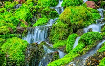 rocks, stones, plants, waterfall, stream, moss