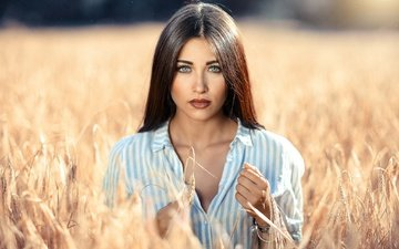 the sun, girl, portrait, field, ears, makeup, shirt, brown hair, alessandro di cicco, margherita