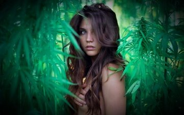 greens, girl, look, model, face, long hair