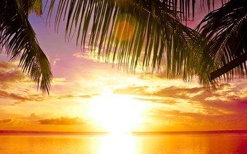 sunset, sea, tropics