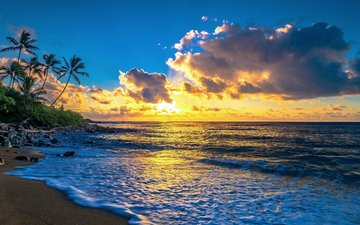sunset, sea, beach, tropics, 10