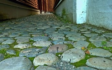 stones, the city, street, moss, architecture, logs, history, 's ancient