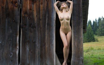 nature, mood, dreams, board, the barn, beautiful figure, nude
