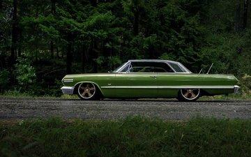 road, forest, style, drives, sedan, hyip, car
