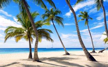 sea, beach, yachts, tropics, 5