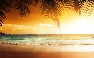 sunset, sea, beach, tropics, 8