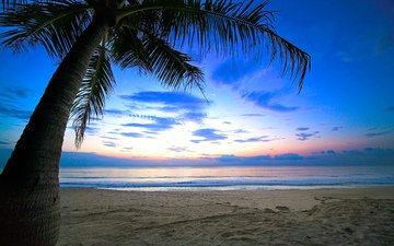 sunset, sea, beach, tropics, 10