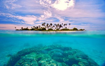 sea, island, tropics