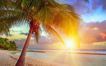 sunset, sea, beach, tropics