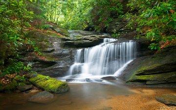 река, природа, лес, водопад