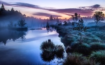 river, nature, forest, morning, freezing