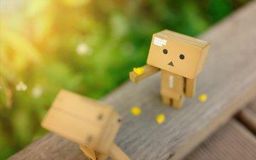 petals, blur, box, meeting, danbo, cardboard robot, wooden surface, oasys88