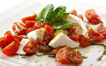 сыр, помидоры, салат, закуска, базилик, моцарелла